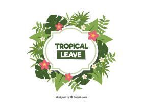 热带树叶的框架_2224995