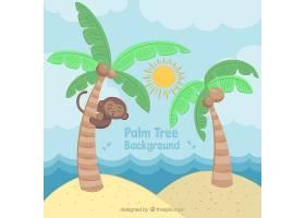 热带背景棕榈树和一只可爱的猴子_1107755