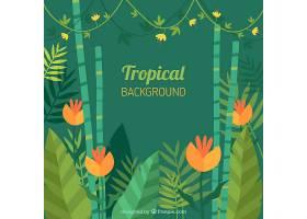 热带背景五颜六色的植物_2263952