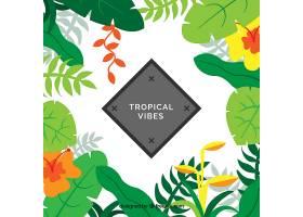 热带背景五颜六色的植物_2263954