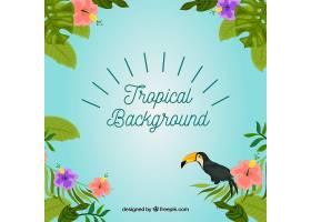 热带背景有植物和巨嘴鸟_2196051