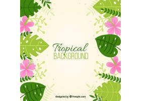 热带背景有植物和花朵_2196042