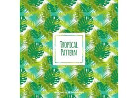 热带夏季模式_2221270