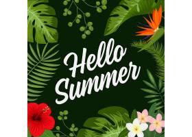 热带夏季背景_1124872