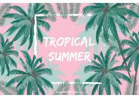 热带夏季背景_1140094