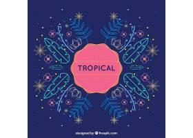 热带夏季背景单行植物_2200173