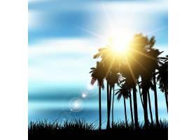 棕榈树景观的剪影_1171599