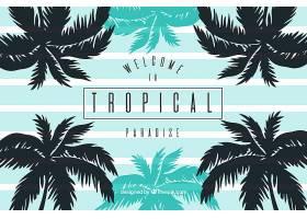 棕榈树的热带夏季背景_1105049