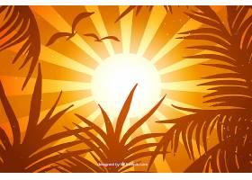 橙色夏日背景热带树叶_2229209