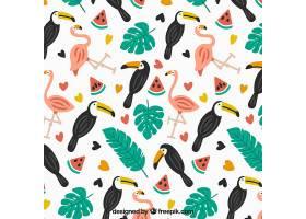 有鸟和西瓜的热带夏季模式_2211513