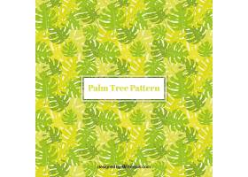 棕榈叶的装饰背景_1174722