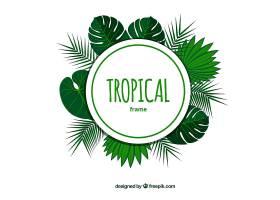 带有树叶和框架的热带夏季背景_2235601