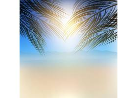 带有棕榈树枝条的夏季主题背景_1250557