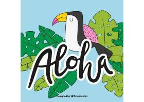 平面设计Aloha Tucano背景_1166219