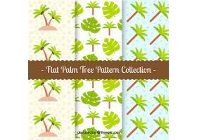 平面设计中的棕榈树图案集_1104169