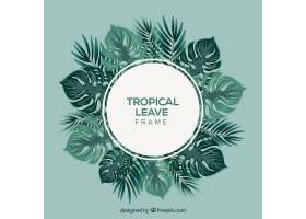 带树叶的热带夏季背景_2235593