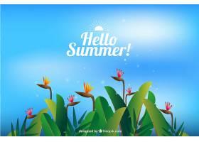 夏日的背景有植物和五颜六色的花朵_2171487