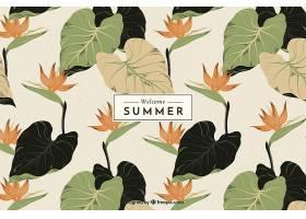 夏日背景复古风格的植被_2411485