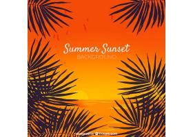 夏日背景棕榈树的剪影_2229773