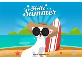 夏日背景海滩上有只可爱的猫_2146953