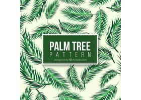 写实棕榈树叶的装饰图案_1107480