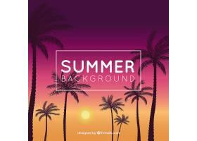 优雅的夏日背景日落时有棕榈树_2224891