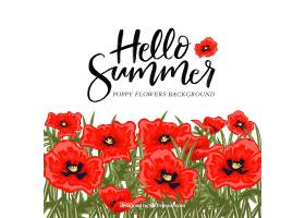 你好夏天的背景五颜六色的植物和鲜花_2143914