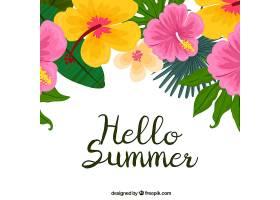 你好夏天的背景五颜六色的植物和鲜花_2143918