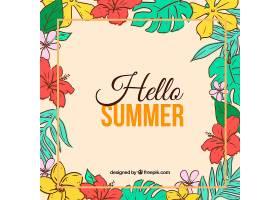你好夏天的背景五颜六色的植物和鲜花_2143919