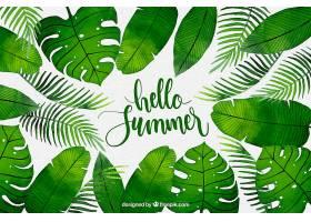 你好夏日背景水彩画风格的植物_2141499