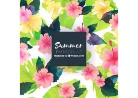 不同植物的夏季背景_2353099