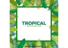 不同树叶的热带背景_2353123