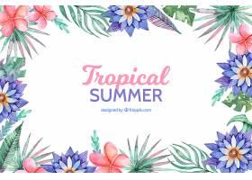 不同植物区系的热带夏季背景_2210904