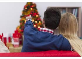 我们喜欢看圣诞树_10677136
