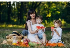 母亲和她的儿子们在公园野餐_10298763