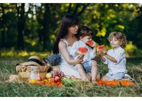 母亲和她的儿子们在公园野餐_10298764