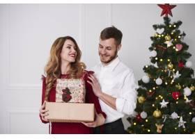 带着圣诞礼物的欢快情侣肖像_11724230