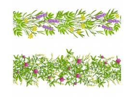 草本植物与野花天衣无缝的图案_3796604
