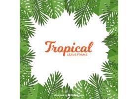 热带树叶的框架是扁平的_2314793