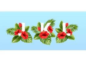 被夏季热带树叶和红色芙蓉花包围的j k l字_13278686