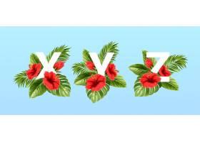 被夏季热带树叶和红色芙蓉花包围的x y z字_13278694