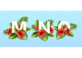 被夏日的热带树叶和红色的芙蓉花包围的m n _13278684