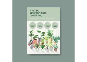 有关夏季植物和室内植物模板设计的信息用_8908305