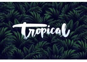 树叶壁纸上的热带字母_7945695