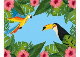 带花卉和动物异国情调框架的热带夏季特卖会_6196649