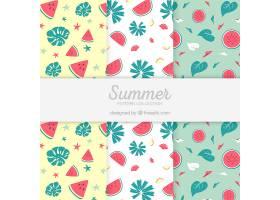 带西瓜的夏季图案包装_2159601