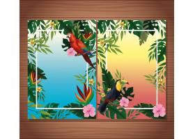 带边框的夏季空白卡片_4795781