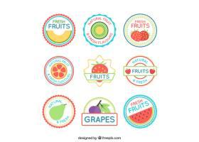 平面设计中的水果标签集_1110252