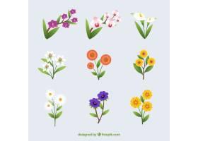 平面设计的夏花收藏_2786781