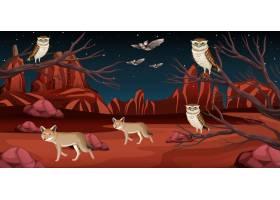 夜景中有岩石山脉的沙漠和沙漠动物景观_11691121